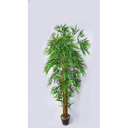 Mata alta bamboo lucky 1.90...